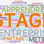 Stages d'observation en milieu professionnel pour les élèves de 3e en situation de COVID : informations utiles