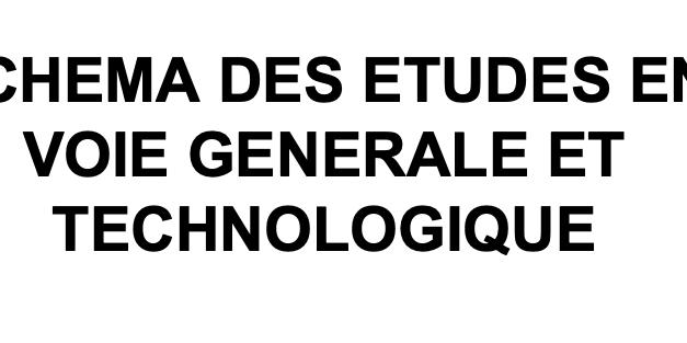 Schéma des études en voie générale et technologique